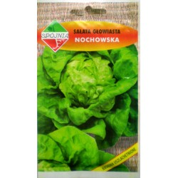 Nasiona sałata Nochowska 2g