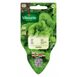 VILMORIN Łatwy wysiew sałata Justine 0,5g