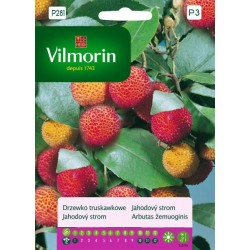 VILMORIN Drzewko truskawkowe