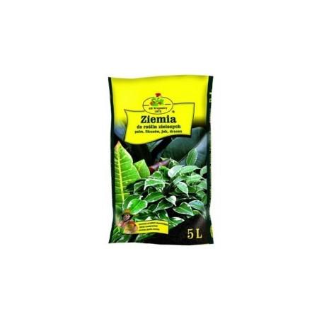 Ziemia do roślin zielonych 5L