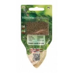 VILMORIN łatwy wysiew pietruszka Rizado Verde Oscuro 5g